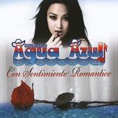 Con Sentimiento Romantico by Conjunto Agua Azul (1)