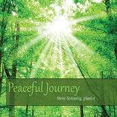 Peaceful Journey by Steve Sensenig