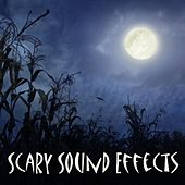 Scary Sound Effects by Halloween Sounds