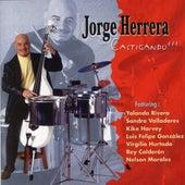 Castigando (feat. Yolanda Rivera, Luis Felipe Gonzalez) by Jorge Herrera