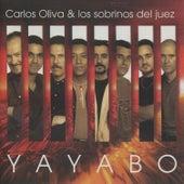 Yayabo by Carlos Oliva Y Los Sobrinos...