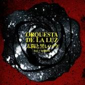 Sol y La Rosa by Orquesta De La Luz