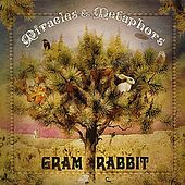 Miracles & Metaphors by Gram Rabbit