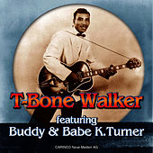 You're Gonna Need My Help Someday by T-Bone Walker