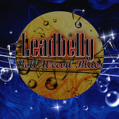 Boll Weevil Blues by Leadbelly