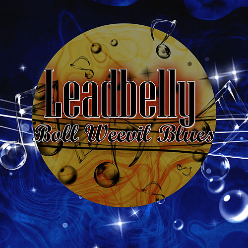 Boll Weevil Blues by Leadbelly