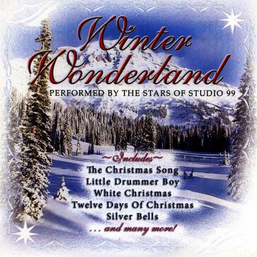 Winter Wonderland by Studio 99
