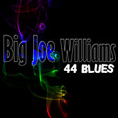 44 Blues by Big Joe Williams