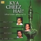 Kya Cheez Hai -Sharaab Ghazls by Various Artists