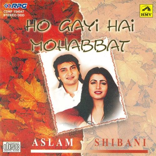 Aslam Shibani - Ho Gayi Hai Mohabbat by Various Artists