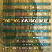 Gwlad I Mi 4 by Various Artists