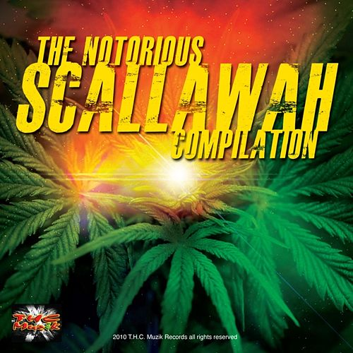 Scallawah Riddim by Various Artists