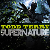 Supernature by Todd Terry