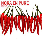 Spicy by Nora En Pure