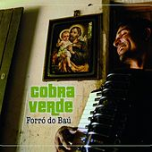 Forro do bau by Various Artists