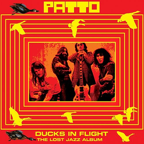 Ducks In Flight by Patto