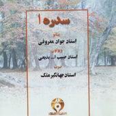 Sedreh I (Iranian Traditional Music) by Javad Maroufi