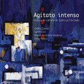 Agitato intenso: Musica de camara de Jose Luis Hurtado by Various Artists