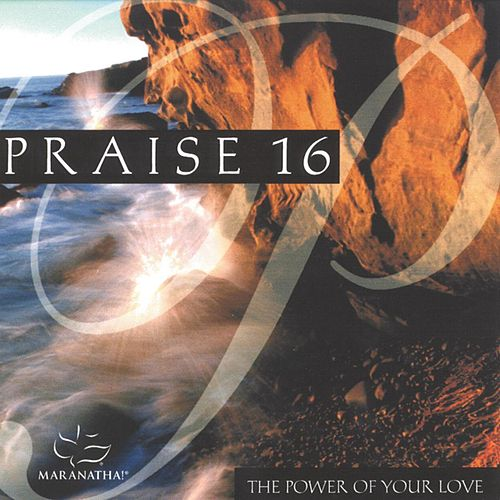 Praise 16 - The Power Of Your Love by Various Artists