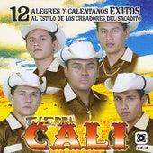 12 Alegres y Calentanos Exitos by Tierra Cali