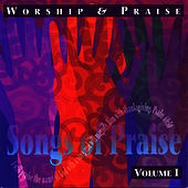 Worship and Praise - Song of Praise Collection Volume 1 by The London Fox Singers
