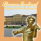 Strauss Festival: Waltzes, Polkas & Marches by Various Artists