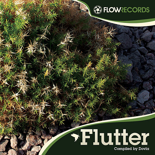 Flutter - compiled by Dovla by Various Artists