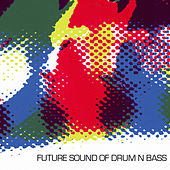 Future Sound Of Drum 'n' Bass by Various Artists