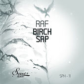Birch Sap by Raf