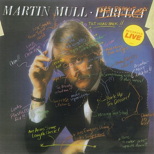 Near Perfect / Perfect by Martin Mull