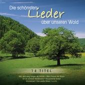 Die schönsten Lieder über unseren Wald by Various Artists