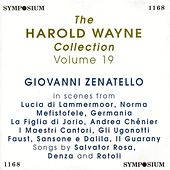 The Harold Wayne Collection, Vol. 19 (1905-1911) by Various Artists