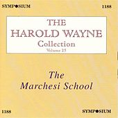 The Harold Wayne Collection, Vol. 25 (1902-1937) by Various Artists