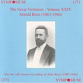The Great Violinists, Vol. 24 (1902-1929) by Various Artists