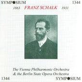 Franz Schalk (1928) by Franz Schalk