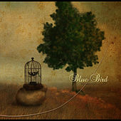 Metamorphosis - EP by Bluebird