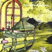 Serenata italiana, vol. 19 by Various Artists