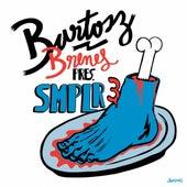 Bartosz Brenes : SMPLR3 by Various Artists