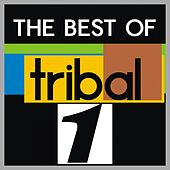The Best of Tribal, Vol. 1 by Various Artists