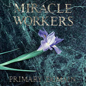 Primary Domain by Miracle Workers