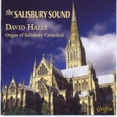 The Salisbury Sound by David Halls