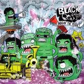 Diggin' the Funk by Black Coffee