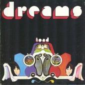 Dreams by Toad