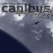 Indibisible (DJ Hazu Remix) (Japanese Import) (12