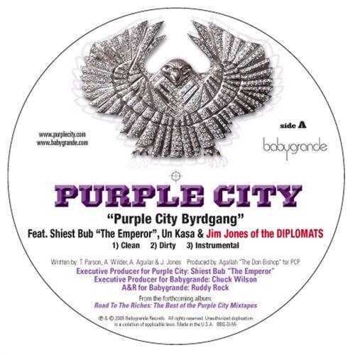 Purple City Byrdgang (feat. Jim Jones (of the Diplomats), Un Kasa & Sheist Bubz) (12') by Various Artists