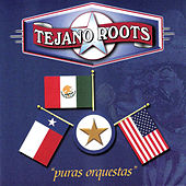 Puras Orquestas by Tejano Roots