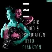 Phytoplankton by Electric Indigo