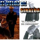 El Chingon De Chingones by El Veloz De Sinaloa
