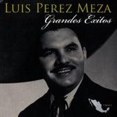 Grandes Exitos by Luis Perez Meza