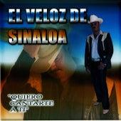 Quiero Cantarte A Ti by El Veloz De Sinaloa
